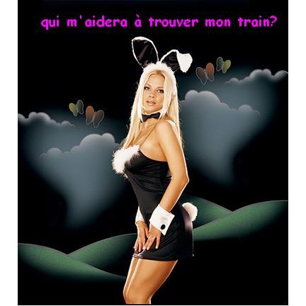 playboy-bunny-dress-3527