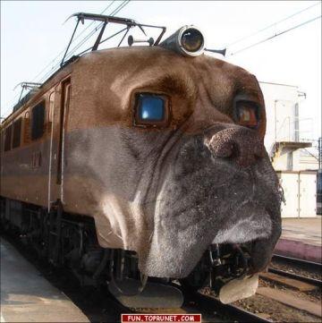 funny_train