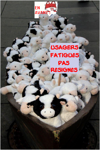 moutons barque