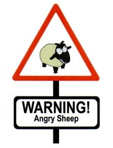 warning_angry_sheep_by_muhlau-d47x1td