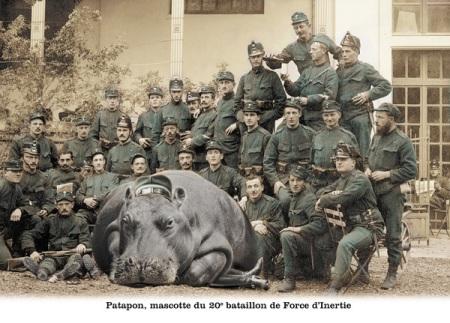 ce bataillon se met (hélas) régulièrement au service de TER Picardie...